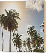 Coconut Trees Wood Print