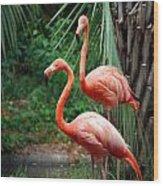 Code Pink Wood Print by Skip Willits