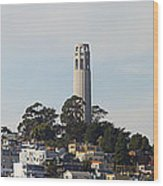 Coit Tower On Telegraph Hill Panorama Wood Print