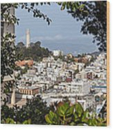 Coit Tower View Wood Print