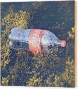 Coke Among The Seaweed Wood Print