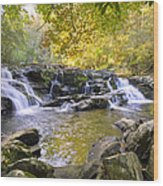 Coker Creek Falls Wood Print