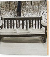 Cold Bench Wood Print