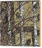 Cold Birds Wood Print