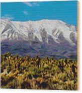 Cold Creek Canyon Nv Wood Print