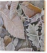Cold Leaves Wood Print