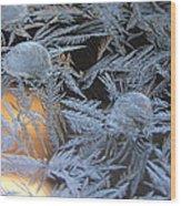 Cold Morning Wood Print