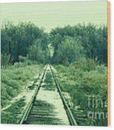 Cold Steel Rails Wood Print