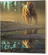 Cold Sunrise Wood Print