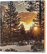 Sun Star Wood Print
