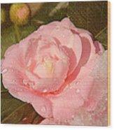 Cold Swirled Camellia Wood Print