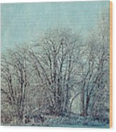 Cold Winter Day Wood Print