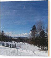 Cold Winter's Day Wood Print by Steven Valkenberg