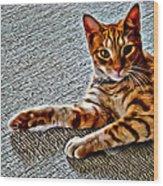 Cole Kitty Wood Print