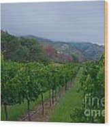 Colibri Vineyards Wood Print