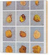 Collage - Leaves On Granite 1 Wood Print