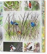 Collage Of Indigos 10 Wood Print