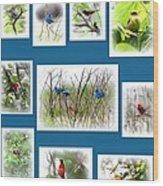 Collage Of Dauphin Island 22 Wood Print