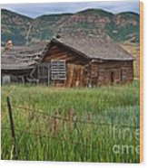 Collapsed Log House In Utah Wood Print