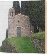 Colle Di Compito - Lucca -tuscany Wood Print