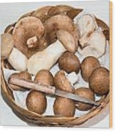 Collected Mushrooms Wood Print
