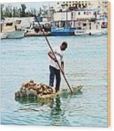 Collecting Conch Wood Print