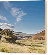 College Valley And Lambden Burn Wood Print