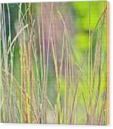 Collier-seminole Sp 15 Wood Print
