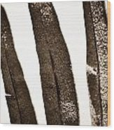 Collier-seminole Sp 29 Wood Print