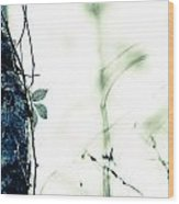 Collier-seminole Sp 3 Wood Print