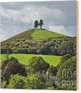Colmers Hill At Symondsbury Wood Print