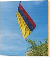 Colombian Flag And Blue Sky Wood Print