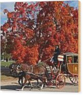 Carriage In Autumn Wood Print