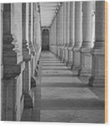 Colonnade Wood Print