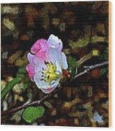 Color 131 Wood Print
