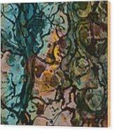 Color Abstraction Xvi Wood Print by David Gordon