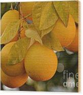 Super Bright Oranges On A Branch Wood Print