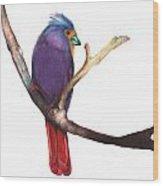 Color Bird 7 Wood Print
