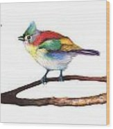 Color Birds Study 3 Wood Print