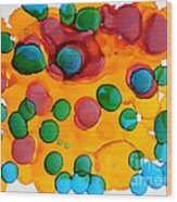 Color Bubbles Wood Print