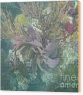 Color Corals Wood Print by Adam Jewell