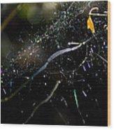 Color Dots Spider Net Wood Print