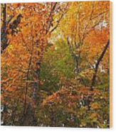 Color Filled Wood Print