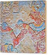 Color Hieroglyph Wood Print