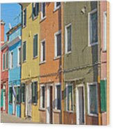 Color Houses In Row Wood Print