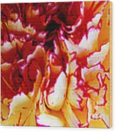 Color In A Carnation Wood Print