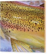 Color Me Trout- Brown Wood Print
