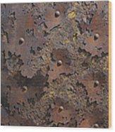 Color Of Steel 2 Wood Print