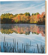 Color On Grist Millpond Wood Print by Michael Blanchette