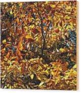 Color Rush Wood Print